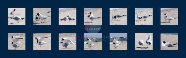 Bildreihe Lovestory Blau